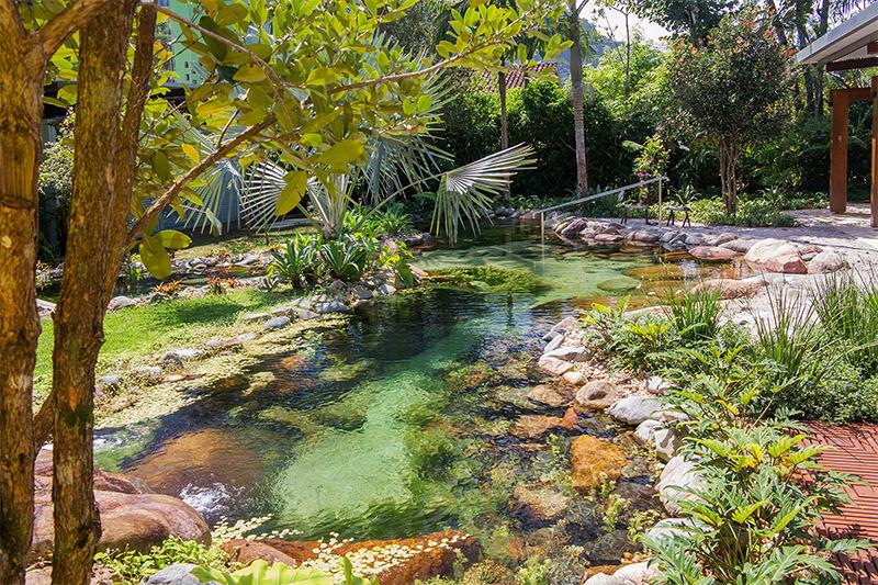 Ng y 11 th ng b y d ng n t th nh th for Construir piscina natural